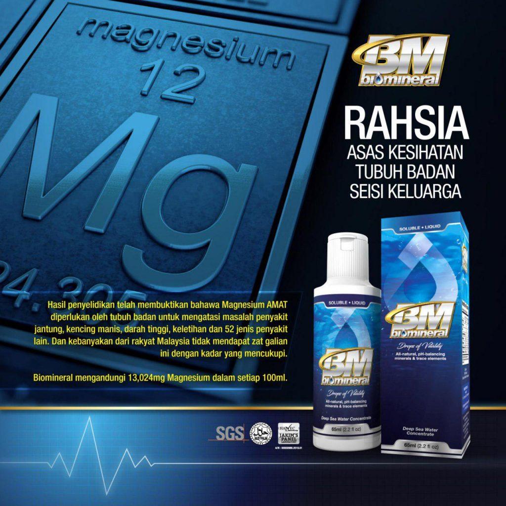 mineral dan magnesium rahsia asas kesihatan tubuh badan manusia untuk merawat pelbagai penyakit tubuh badan kencing manis darah tinggi dan gout