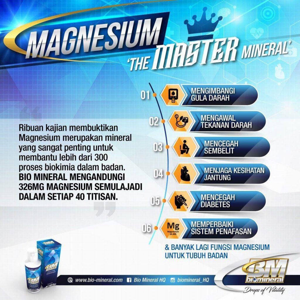 kepentingan untuk mencukupkan keperluan mineral magnesium untuk menguatkan tubuh merawat pelbagai penyakit antaranya masalah jantung, kencing manis darah tinggi dan gout