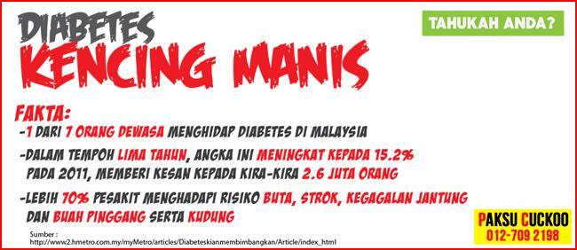 fakta mengenai penyakit kencing manis di malaysia penawar kencing manis terbaik dengan biomineral