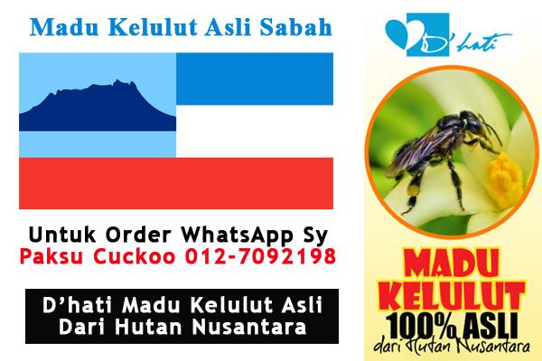 madu kelulut asli sabah pembekal pengedar penjual dhati madu kelulut asli di sabah dan seluruh malaysia