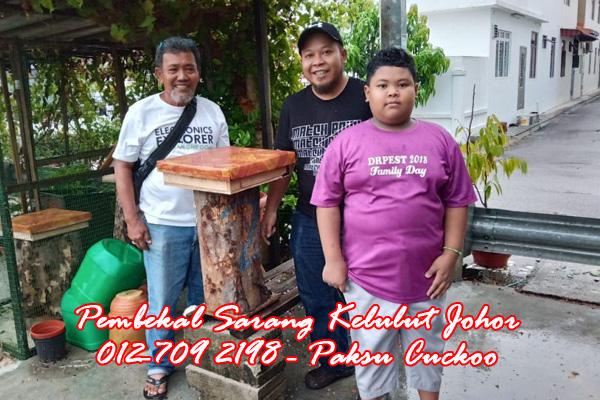 paksu cuckoo 0127092198 pengedar dan pembekal sarang kelulut johor