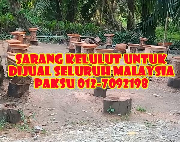 sarang kelulut untuk dijual ke seluruh malaysia