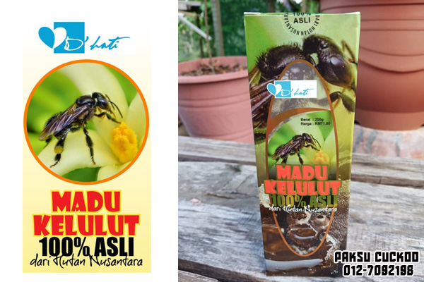 beli madu kelulut asli di seluruh malaysia madu lebah kelulut di johor, melaka, negeri sembilan, selangor, kuala lumpur, perak, pulau pinang, kedah, perlis, kelantan, terengganu, pahang, sabah, sarawak