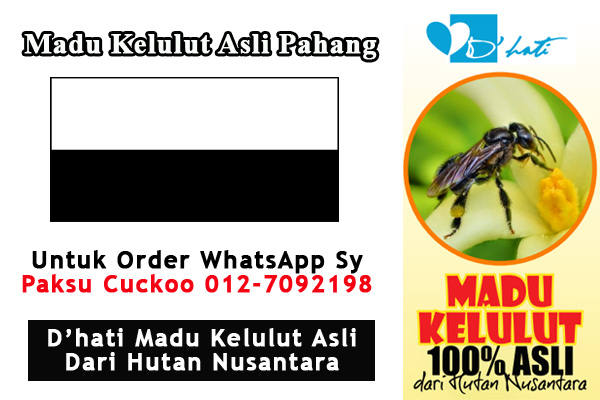 madu kelulut asli pahang pengedar dan pembekal dhati madu kelulut asli di pahang dan seluruh malaysia