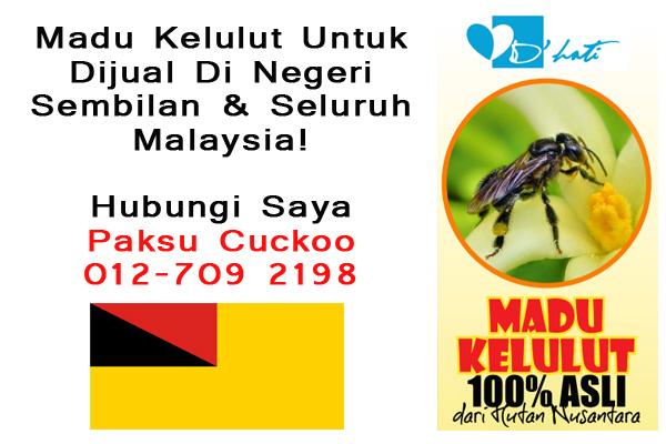 madu kelulut untuk dijual di negeri sembilan dan seluruh malaysia, madu kelulut asli, penjual madu kelulut asli di seluruh malaysia, hubungi saya Paksu Cuckoo 012-7092198