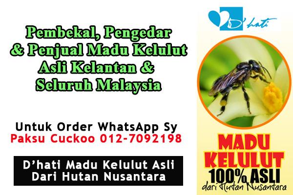 dhati madu kelulut asli dari hutan khasiat lebah kelulut, madu kelulut asli untuk dijual, pembekal pengedar penjual madu kelulut asli kelantan dan seluruh malaysia
