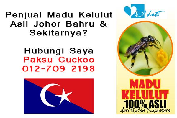 penjual madu kelulut asli johor bahru skudai senai kulai masai pasir gudang gelang patah utm pekan nanas madu kelulut asli untuk dijual seluruh malaysia penjual madu kelulut asli