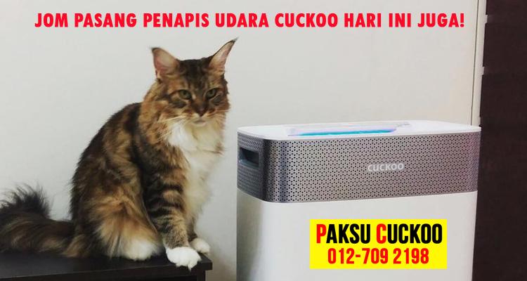 jom pasang penapis udara cuckoo penapis udara terbaik vs penapis udara coway the best cuckoo air purifier