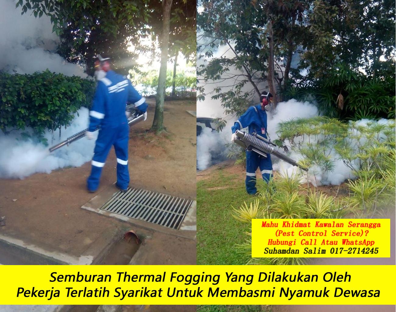 khidmat kawalan semburan nyamuk fogging larvaciding oleh syarikat kawalan serangga company pest control taman desa kl felda Bukit Nanas perumahan kawasan perindustrian near me