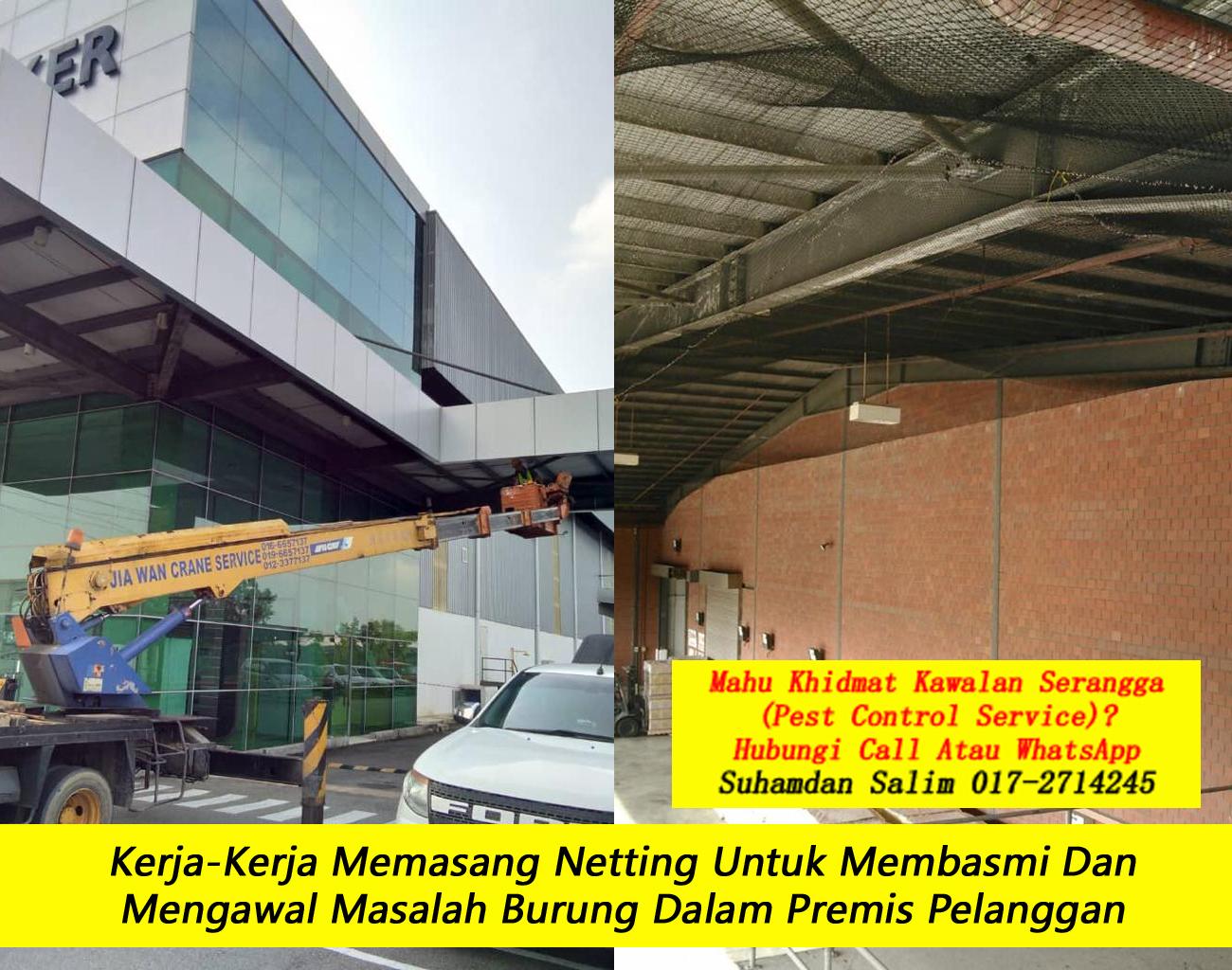 khidmat kawalan serangga burung kelawar syarikat kawalan serangga company pest control Sentul kl taman perumahan kawasan perindustrian near me felda